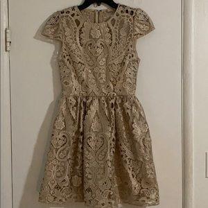 Alice + Olivia Dresses - ALICE + OLIVIA gorgeous dress!